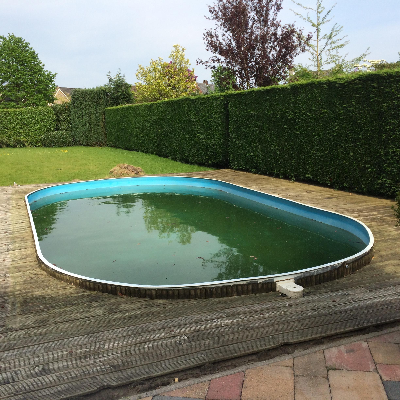 Zwembad algenvrij maken